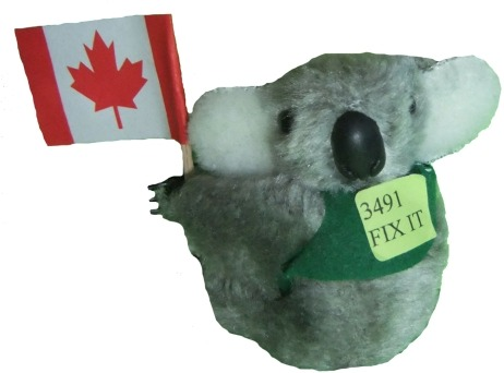 Koala with Canada Flag